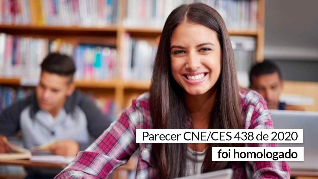 Read more about the article MEC é favorável às novas DCNs do curso de Administração